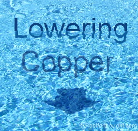 how to lower swimming pool copper